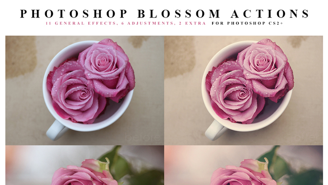 Photoshop-Blossom-Actions