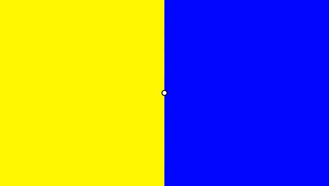 色順応用の画像