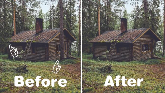 木と葉の除去