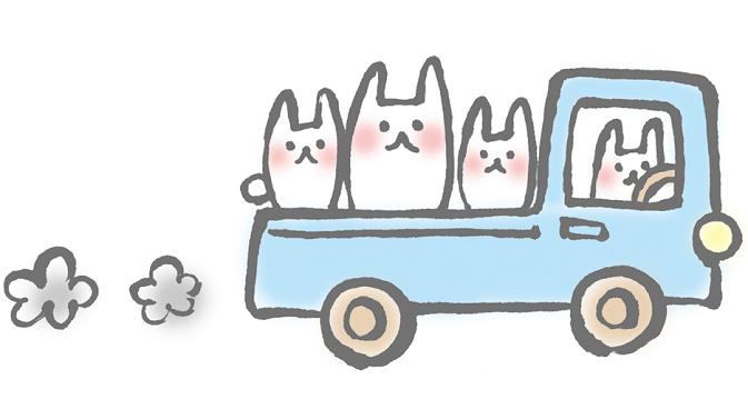 うさぎ 運搬 トラック