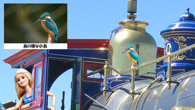 回答画像鳥の様な小鳥